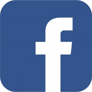 Facebook Logo 7 Colors Multimedia B V