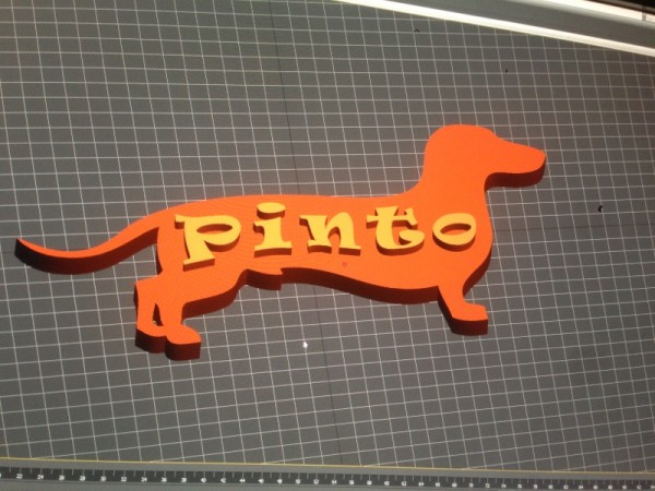 pinto1